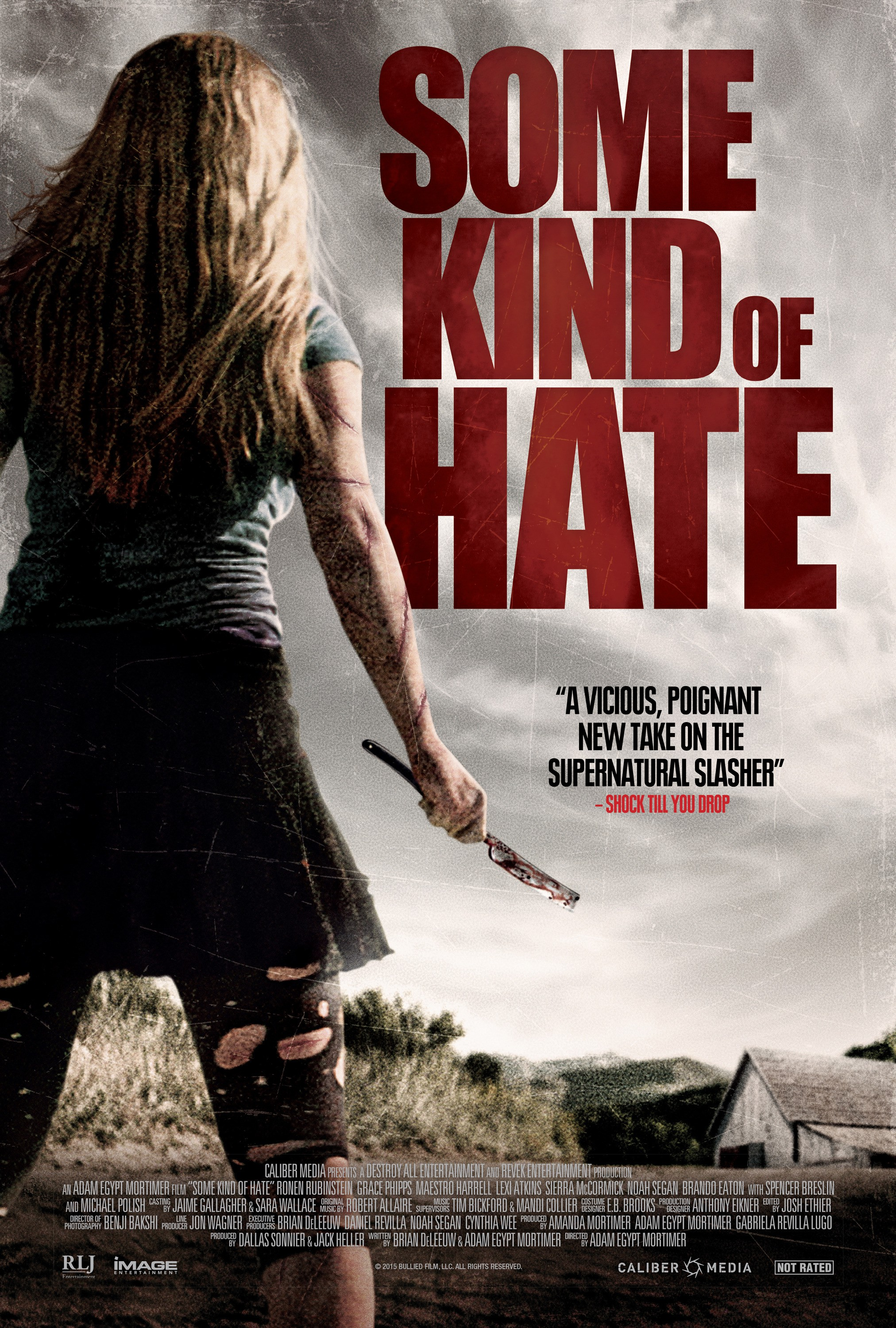 skh_some_kind_of_hate_keyart